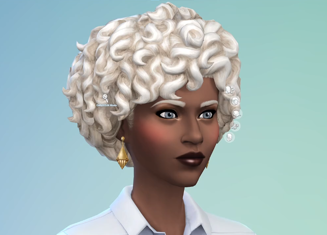 The Sims 4 Update 1.73.48.1030 - April 27, 2021 - The Sim Architect